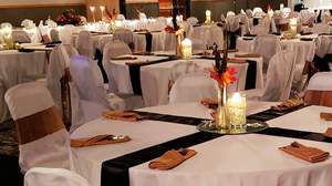 Springfield IL wedding venues